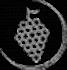 Pictogramme d'un raisin représentant le fruit de prédilection de Frédéric